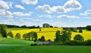 English weather idioms and metaphors